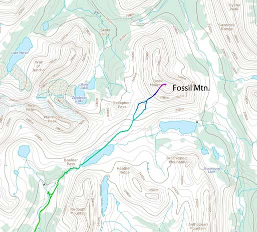Fossil Mountain standard scramble route