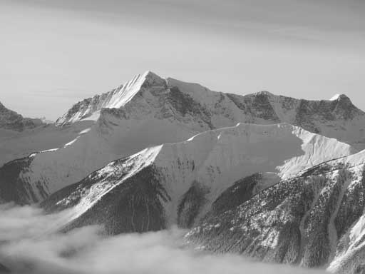 Mt. Gray
