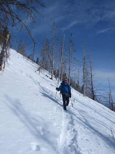 Ben snowshoeing down the typical terrain