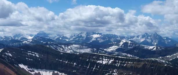 Giants in Glacier National Park, MT