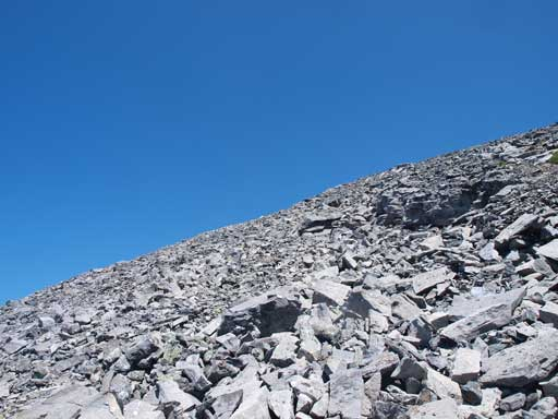 Typical scree on Read's Tower