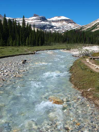 Crossing Little Yoho River in the morning.