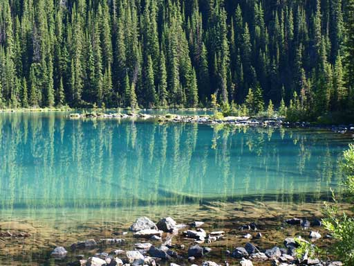 The crystal clear water in Lake O'Hara