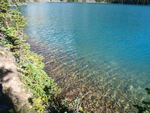 Back to Lake O'Hara