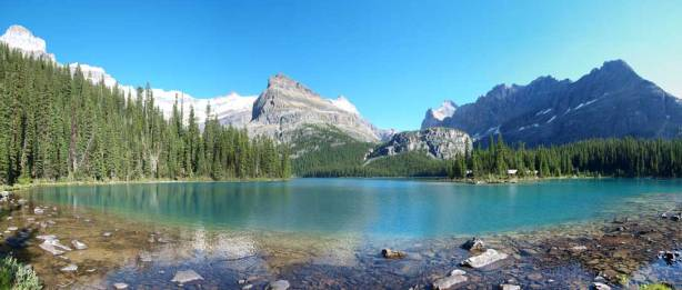 A panorama from Lake O'Hara. Click to view large size.