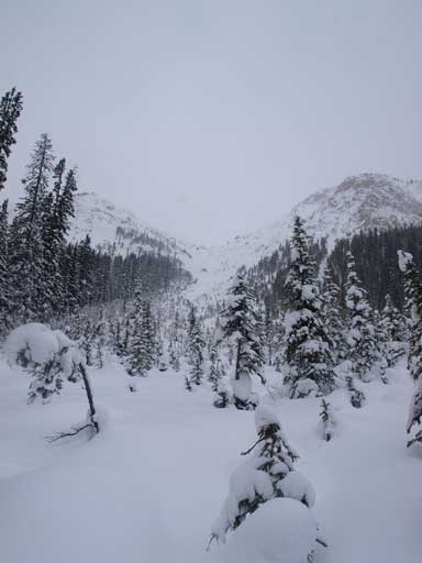 There were two big avalanche paths to pass by on Healy Pass approach