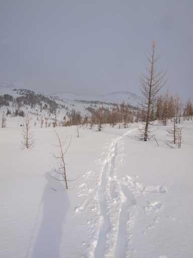 Trail-breaking starts here