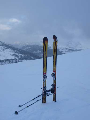 Ready to ski down the hill