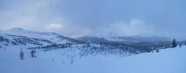 Panorama of Healy Meadows area