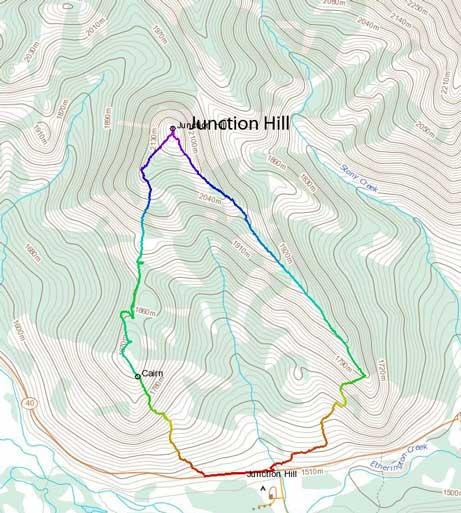 Junction Hill hiking loop