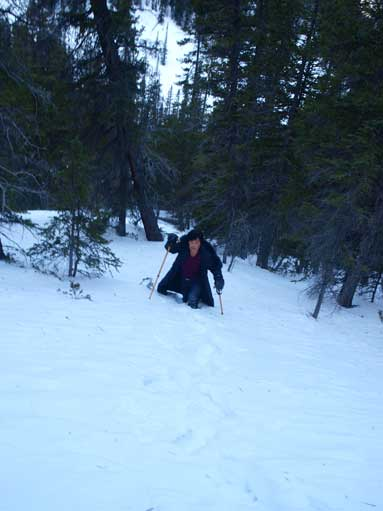 I still suggest bringing snowshoes, otherwise you'll struggling in the deep treed snow.