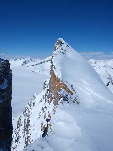 From false summit, the true peak looks intimidating!
