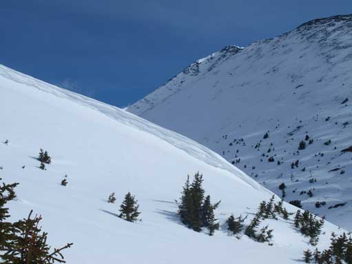 At treeline. Terrain gets exposed to avalanche