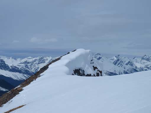 Looking back at the same cornices
