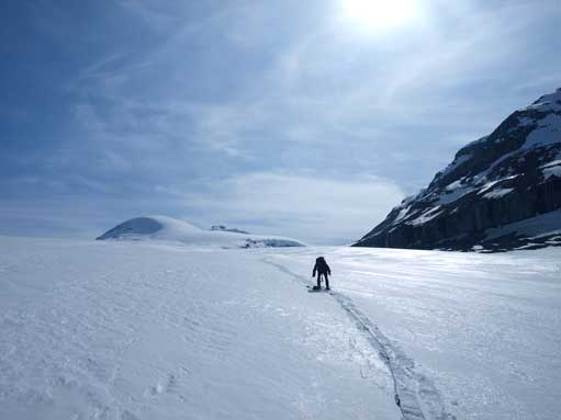 Looking back. Oh the long Sask Glacier...