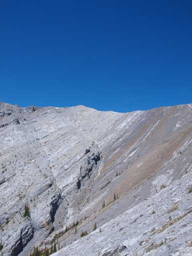 Looking up one of the false summits on Nihahi Ridge