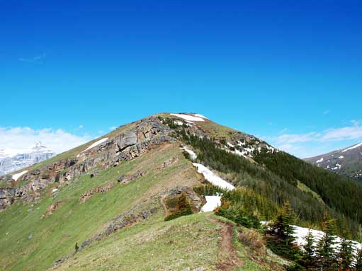 Looking towards the top of Olympic Summit (the top of Nakiska ski hills)
