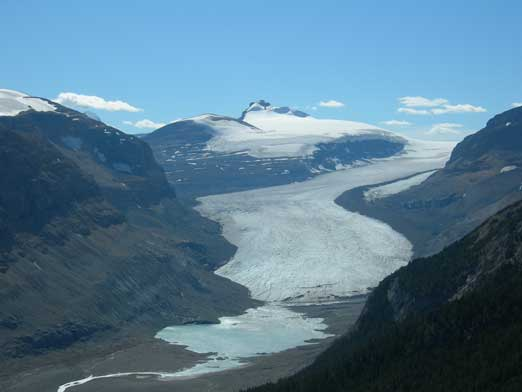 Sask. Glacier and Castleguard Mountain behind