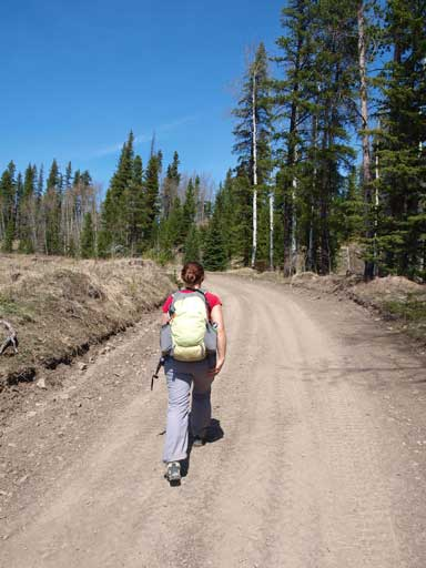 Typical road hike