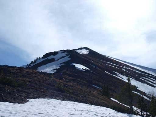 Eventually we came out of the trees, and the alpine area was thankfully, snow free