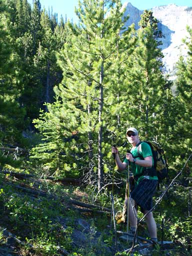 Neil hiking up the forested slope