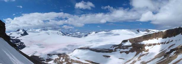 Panorama of Wapta Icefield