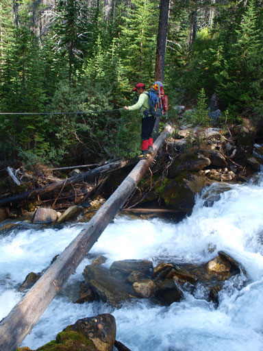 Dan crossing the sketchy log bridge