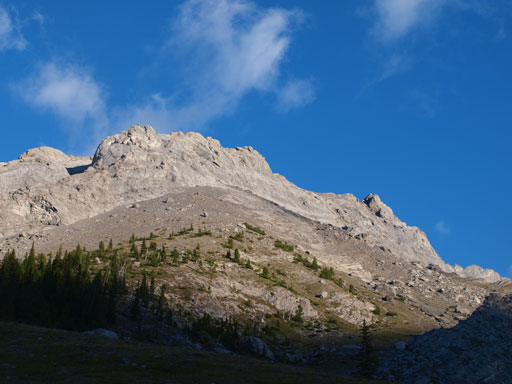 Looking up Old Goat Mountain.