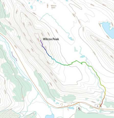 Wilcox Peak standard scramble route