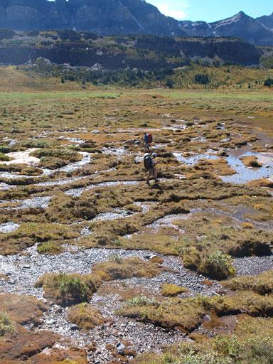 Bog crossing