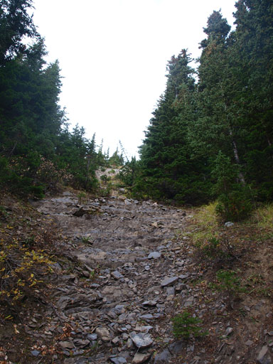 Ascending a cut block to minimize bushwhacking