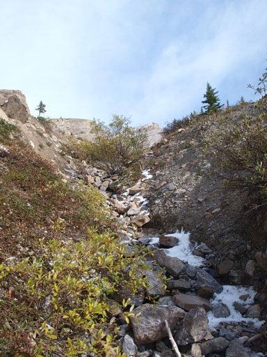 The lower gully