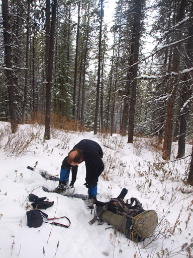 Finally got enough snow to strap snowshoes on after 10km in.