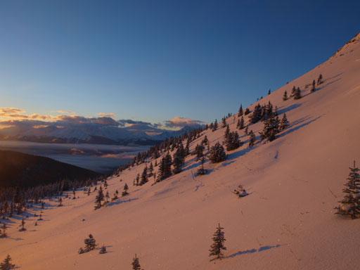 Beautiful alpine environment