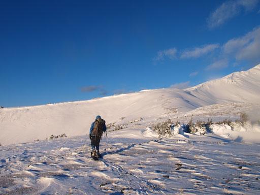 The broad ridge ahead would lead us easily to the summit ridge