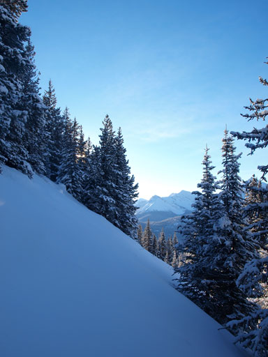 There're quite a few open slopes to ascend in the trees