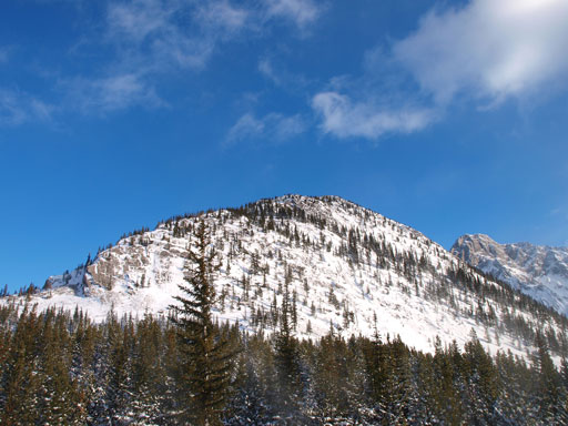 The upper section of Limestone Mountain.