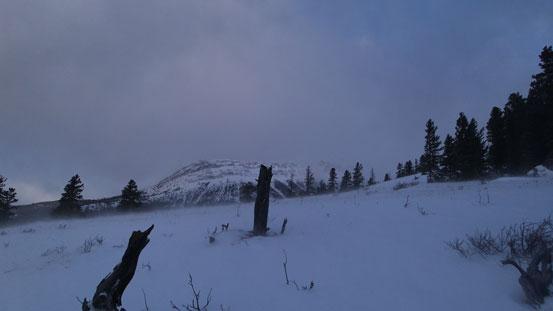 Near the ridge crest now