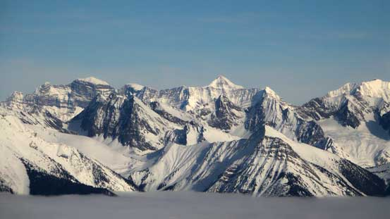 Giants on Freshfield Icefields - Mt. Dent on the far left and Mt. Freshfield at center