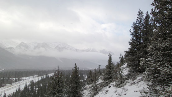 A view of Bow Valley