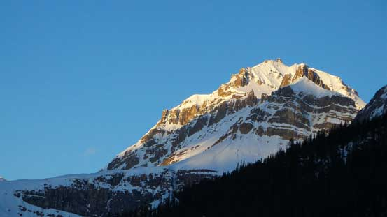Impressive Peyto Peak