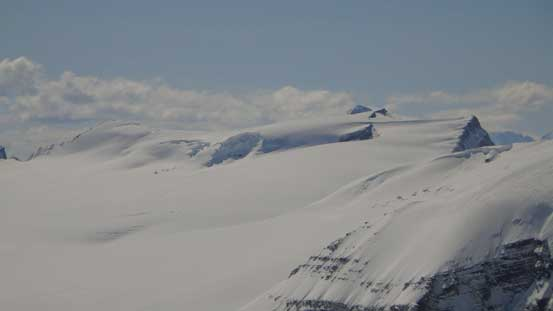 I solo'd Mt. Gordon 2 yeas ago. It was my first summit on the Wapta Icefield