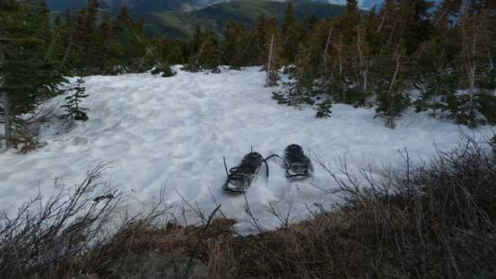 Ditched snowshoes at treeline