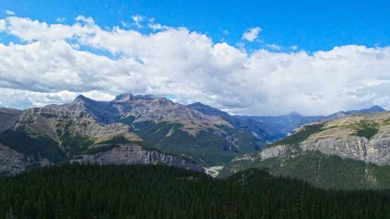 A view towards Mt. Costigan from near treeline
