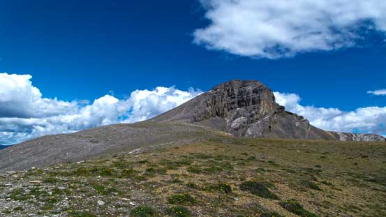 We gained the plateau, and the summit was finally in sight