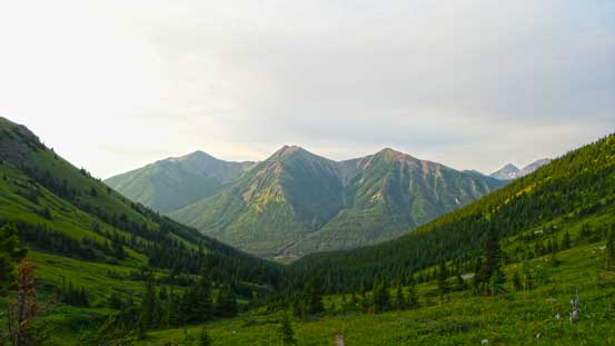 Looking back from above treeline