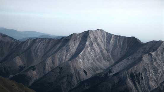 Mt. Burns