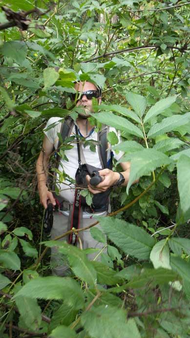 Eventually we entered the bush again...