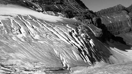 Crevasses on the glacier. Our path would avoid most of them except for one.