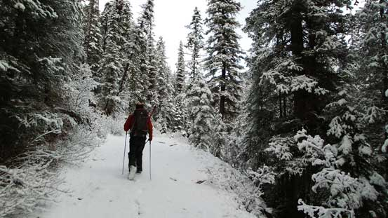 Hiking on Jacques Lake Trail. Continuous snow from the start!